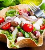 Gemengde salade met mozarella en ansjovis Royalty-vrije Stock Foto's
