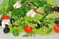 Gemengde salade met tomaten en feta-kaas Stock Foto