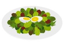 Gemengde saladebladeren met hard gekookt ei Stock Fotografie