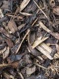 Gemengde schors op grond stock foto