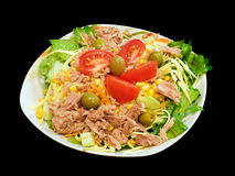 Gemengde tonijnsalade Stock Afbeelding