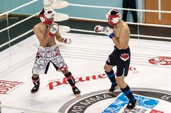 Gemengde Vechtsporten royalty-vrije stock foto