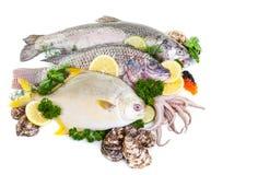 Gemengde Verse Vissen Stock Afbeelding