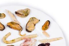 Gemengde zeevruchtenplaat Royalty-vrije Stock Afbeelding