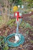 Gemenskapträdgårdklapp och slang Royaltyfri Foto