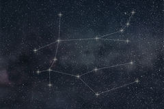 Gemini Constellation. Zodiac Sign Gemini constellation lines Royalty Free Stock Images