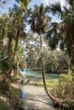 Gemini Springs Park em Florida fotos de stock