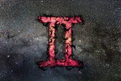 Gemini Zodiac Sign White Background foto de stock royalty free
