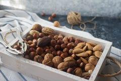 Gemischte rohe Nüsse in den Nussschalen - Haselnuss, Walnuss, Mandel und Muskatnuss Gesunder Lebensstil, Diätprodukt Lizenzfreie Stockbilder