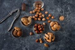 Gemischte rohe Nüsse in den Nussschalen - Haselnuss, Walnuss, Mandel und Muskatnuss Gesunder Lebensstil, Diätprodukt Stockfotografie