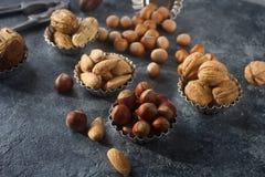 Gemischte rohe Nüsse in den Nussschalen - Haselnuss, Walnuss, Mandel und Muskatnuss Gesunder Lebensstil, Diätprodukt Lizenzfreie Stockfotos