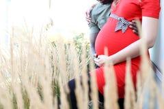 Gemischte schwangere Paare, die Bauch halten Stockfotografie