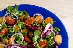 Gemischter frischer Salat Stockfotografie