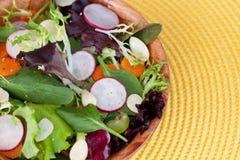 Gemischter grüner Salat Lizenzfreie Stockfotografie