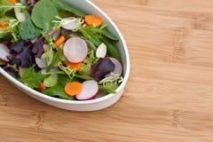Gemischter grüner Salat Lizenzfreies Stockfoto