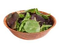 Gemischter grüner Salat Stockbild