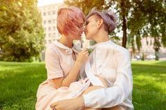 Gemischtrassige lesbische Paare, die auf dem Gras liegen Sie sind zwei junge Frauen, die am Park stillstehen lizenzfreie stockfotos