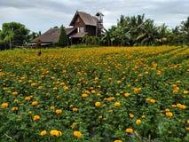 gemitir προσφορές λουλουδιών στους Θεούς στοκ φωτογραφίες