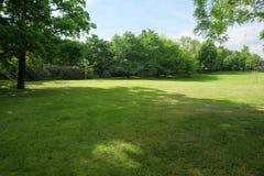 Gemodelleerd gazon in het park royalty-vrije stock afbeelding