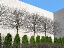 Gemodelleerd ontwerp in de stad, eenvoudig en modern, bomen, de bureaubouw royalty-vrije stock fotografie