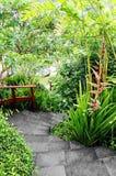 Gemodelleerde tropische tuin met weg royalty-vrije stock fotografie