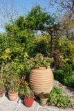 Gemodelleerde tuin Stock Fotografie