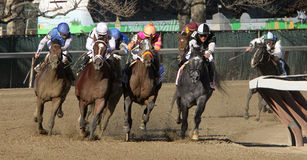 Gemologist Wins The Woodward Memorial Stock Image