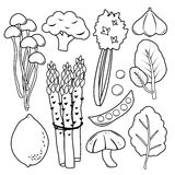 Gemüse-gesetzter schwarzer Ikonen-Sammlungs-Vektor Stockbild