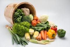 Gemüse mit Eimer Lizenzfreies Stockbild