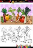 Gemüsegruppenillustration für die Färbung Stockfotos