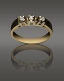 Gemstone ring Stock Images