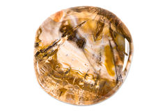 Gemstone on white background, fossil wood Stock Photography