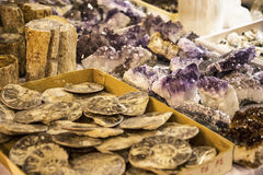 Gemstones and fossils at the Festival of the Orient in Rome Italy. The Festival of the Orient was held at the Exhibition Centre near Rome Airport at Fumincino on Stock Image