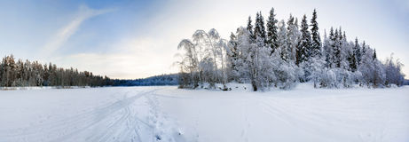 Genähtes Panorama des Winterfeldes Stockbilder