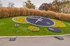 GENÈVE, SUISSE - 30 OCTOBRE 2015 : Vue étonnante de matin d'horloge de fleur dans la ville de Genève Images stock
