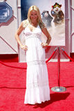 Gena Lee Nolin. 19/7/2009 - Hollywood - Gena Lee Nolin at the Disney World Premiere of `G-Force` held at the El Capitan Theater in Hollywood, United States Royalty Free Stock Photography