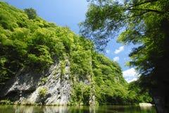 Genbi de vallée dans Iwate, Touhoku Image stock