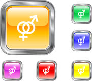 Gender Button Royalty Free Stock Photos