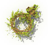 Gender concept. The green plant in form of venus sign. Royalty Free Stock Photography