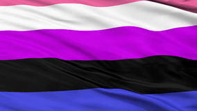 Gender Fluidity Pride Close Up Waving Flag. Gender Fluidity Pride Flag, Close Up Realistic 3D Animation, Seamless Loop - 10 Seconds Long stock footage