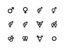 Gender identities icons on white background. Vector illustration vector illustration