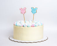 Gender reveal cake with marshmallow and gingerbread. A gender reveal cake with marshmallow and gingerbread royalty free stock photography