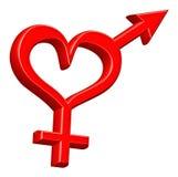 Gender sign heterosexual couple. Gender symbol heterosexual couple bounded by red heart love hearts happy valentines day Stock Photography
