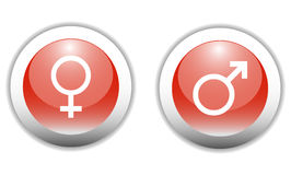 Gender Sign Icons. Gender Sign Icon Buttons (Vector Stock Photos