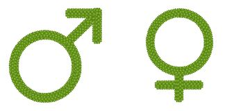 Gender Symbol Made of Four Leaf Clove Stock Image