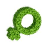 Gender marks from grass -05. Gender symbol of a woman. 3D Realistic, textured grass, on a white background. The volumetric symbol of the feminine. With soft stock illustration