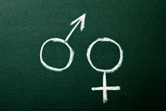 Gender symbols Royalty Free Stock Image