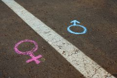Gender symbols or signs for male and female drawn with chalk on asphalt. The concept of gender equality. Gender symbols or signs for male and female drawn with royalty free stock images