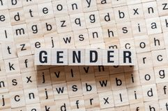 Gender word concept on cubes stock photography