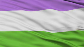 Genderqueer Pride Close Up Waving Flag. Genderqueer Pride Flag, Close Up Realistic 3D Animation, Seamless Loop - 10 Seconds Long stock footage